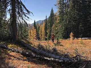 Connecting with the trail to Indianhead Pass