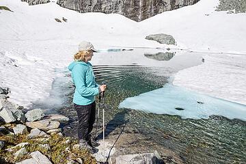 Icebergs in a no name lake