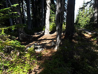 a campsite maybe a mile downtrail from the basin