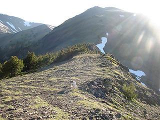 Rowena, sunburst, and summit of Baldy