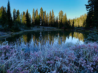 Tipsoo Lake (Nov)