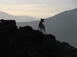 Rowena on Baldy summit