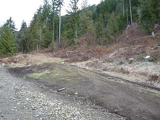 Trail starts on an abandoned logging road