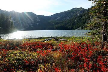 shoreside meadow at Schaefer Lake