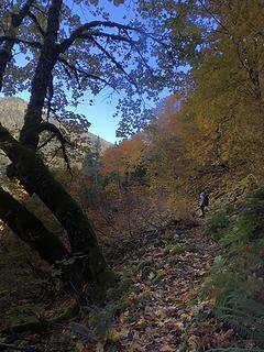Perry Creek Falls 10/10/19
