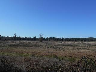 West Rocky Prairie Wildlife Area 022020 05