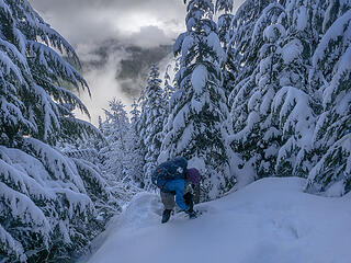 Somewhere on the uphill we crossed into fresh snow and changed to snowshoes . . .