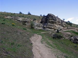 Nice arrangement of rock, flowers, and trail.