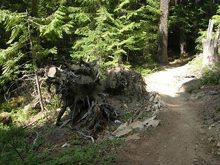 Lower Crystal Lake trail.