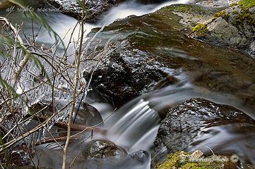 Febuary-Big-Creek-Trail