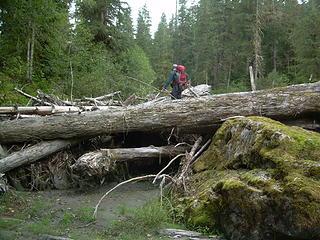 ObiTonyKenobi going over a log jam