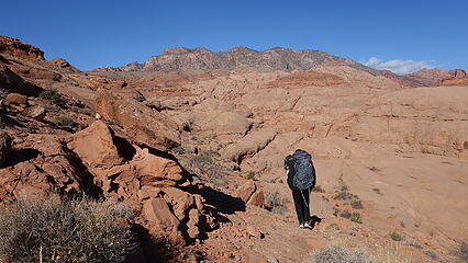 Hiking down the old cattle trail