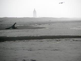 foggy-lighthouse