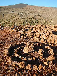 Kilohana summit rock art