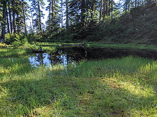 We diverted briefly to the small pond at 4100' to refill our water bottles for the trip down.