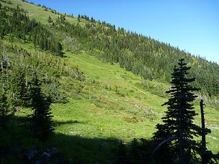 Meadow on left flank of Anacortes ridge