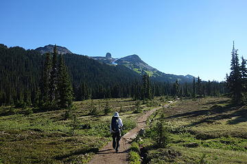 Hiking through Taylor Meadow