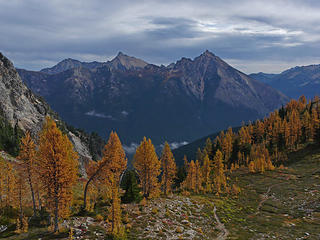 Easy Pass Larches