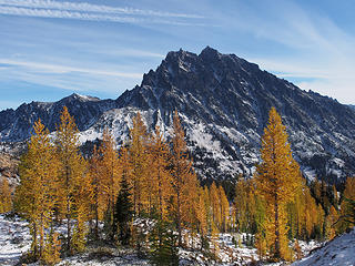 Mt Stuart & The Larch