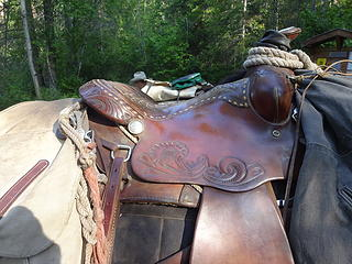 Saddle detail.