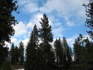 Blue Skies at 29 Pines