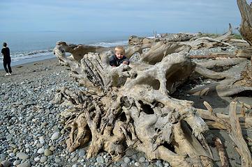 Caleb on the driftwood