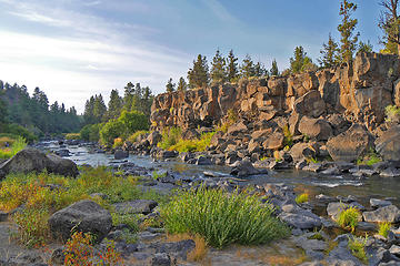 Sawyer Park, Bend OR, Dog walk