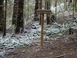 K3 trail joins upper Tiger Mountain trail.