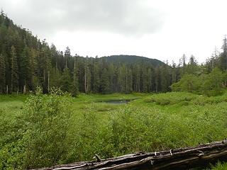Satsop Lake