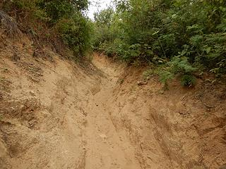 trail trench