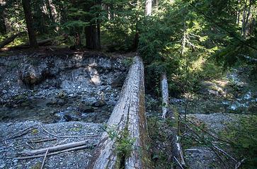 Decaying foot log crossing Gamma Creek