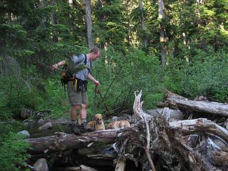 Scott guides Zeus & Athena through second stream crossing.
