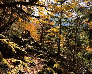 Perry Creek Falls Trail 10/10/19