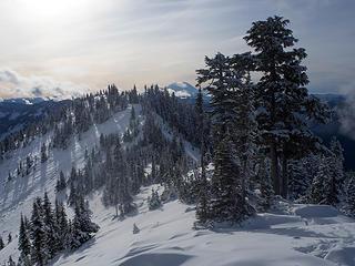 A view south