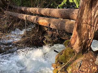 Twin Lakes Creek 5/3/19