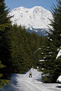 Follow the snow cone