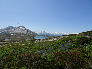 Glacier View Lake and horsefly
