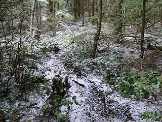 Snow/ice dusting on upper trail to West Tiger 2.