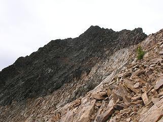 Below Blackcap's NE ridge
