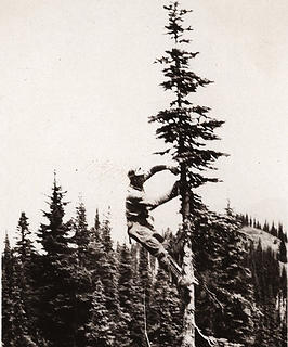 Phone lines being placed in 1930 the year before the lookout was built.
