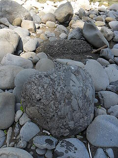 gotta love Oly rock, one in the background looks like concrete, one in the foreground looks like polished concrete.