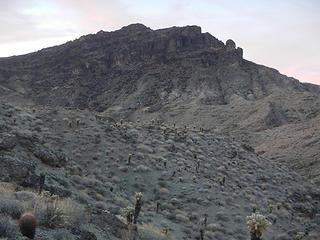 """""""Muffin Peak"""""""