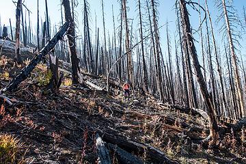 descending the burn west of saska pass