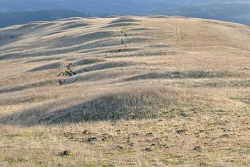 Mounds on the ridge top.