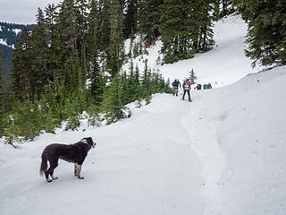 We put on snowshoes where the trail crosses the ridge to the south side. Isabel doesn't need them.