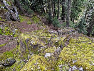 Mossy talus everywhere