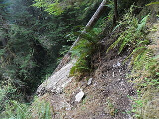 the rock slab is really that steep, the bootpath is just above it.