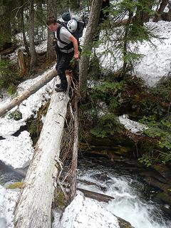 exposed log crossing