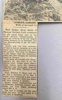 Queets Big Fir article times May 23 1941 02