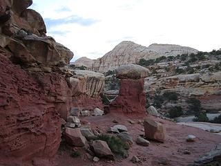 Cohab Trail